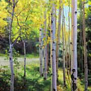 Early Autumn Aspen Print by Gary Kim