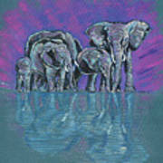 Elephant Family Print by John Keaton
