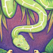 Emerald Tree Boa Print by Amy S Turner