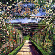 English Rose Trellis Print by David Lloyd Glover