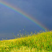 Evening Rainbow Over Pasture Field Print by Thomas R Fletcher