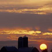 Farm At Sunset Print by Steve Somerville