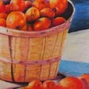 Farmers Market Produce Print by Nadine Rippelmeyer