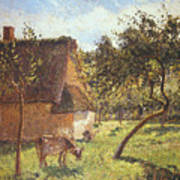 Field At Varengeville Print by Camille Pissarro
