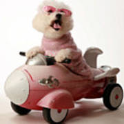Fifi Is Ready For Take Off In Her Rocket Car Print by Michael Ledray
