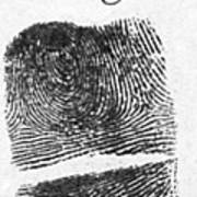 Fingerprints Of Vincenzo Peruggia, Mona Print by Photo Researchers
