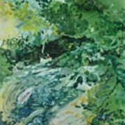 Fish Ahead Print by Elizabeth Carr