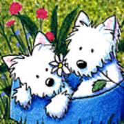 Flower Bed Westies Print by Kim Niles