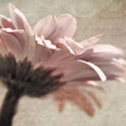 Flower Poetry Print by VIAINA Visual Artist
