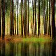 Forest Abstract Print by Svetlana Sewell