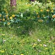 Forest Flowers Landscape Print by Carol Groenen