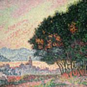 Forest Near St Tropez Print by Paul Signac