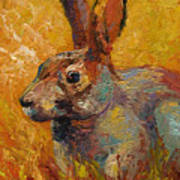 Forest Rabbit IIi Print by Marion Rose