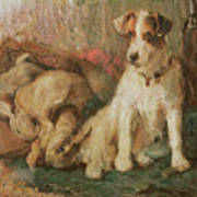 Fox Terrier With The Day's Bag Print by English School