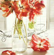 Fresh Spring Tulips In Old Milk Bottle  Print by Sandra Cunningham