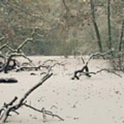 Frozen Fallen Wide Print by Andy Smy