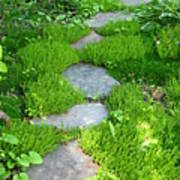 Garden Path Print by Idaho Scenic Images Linda Lantzy