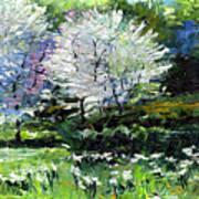 Germany Baden-baden Spring 2 Print by Yuriy  Shevchuk