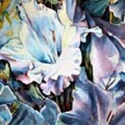 Glads White  Print by June Conte  Pryor