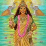 Goddess Lakshmi Print by Sue Halstenberg