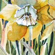 Golden Daffodil Print by Mindy Newman