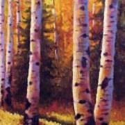 Golden Light Print by David G Paul
