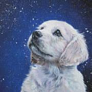 Golden Retriever Pup In Snow Print by Lee Ann Shepard