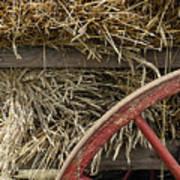 Grain Wagon Print by Robert Ponzoni