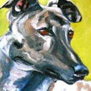 Greyhound Print by Susan A Becker