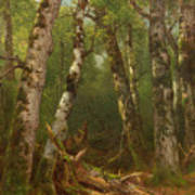 Group Of Trees Print by Asher Brown Durand