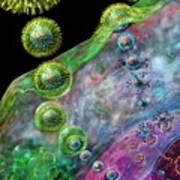 Herpes Virus Replication Print by Russell Kightley