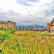 High Line On The Hudson Print by Randy Aveille