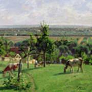 Hillside Of Vesinet Print by Camille Pissarro