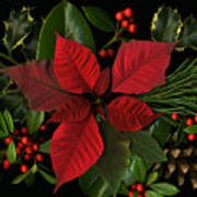 Holiday Greenery Print by Deborah J Humphries