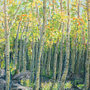 Into The Aspens Print by Mary Benke