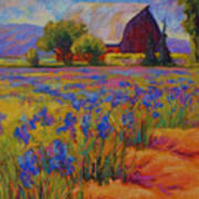 Iris Field Print by Marion Rose