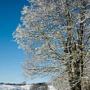 Jenne Farm Winter In Vermont Print by Edward Fielding