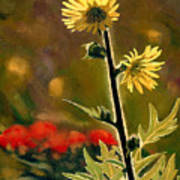 July Afternoon-compass Plant Print by Bruce Morrison