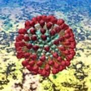 Lassa Virus Print by Russell Kightley