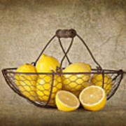 Lemons Print by Heather Swan