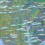 Lily Pond 2 Print by Michael Camp