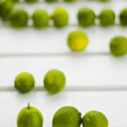 Lime Green Print by Skip Hunt