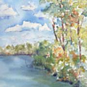Lucien Lake Shoreline Print by Pat Katz