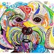 Maltese Puppy Print by Eloise Schneider
