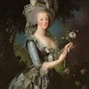Marie Antoinette Print by Elisabeth Louise Vigee Lebrun