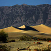 Mesquite Flat Dunes - Death Valley California Print by Christine Till