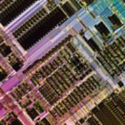 Microprocessors Print by Michael W. Davidson