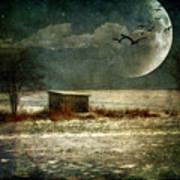 Moonstruck Print by Lois Bryan