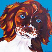 Murphy Print by Susan Szabo