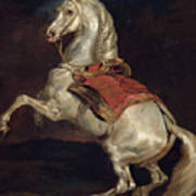 Napoleon's Stallion Tamerlan Print by Theodore Gericault